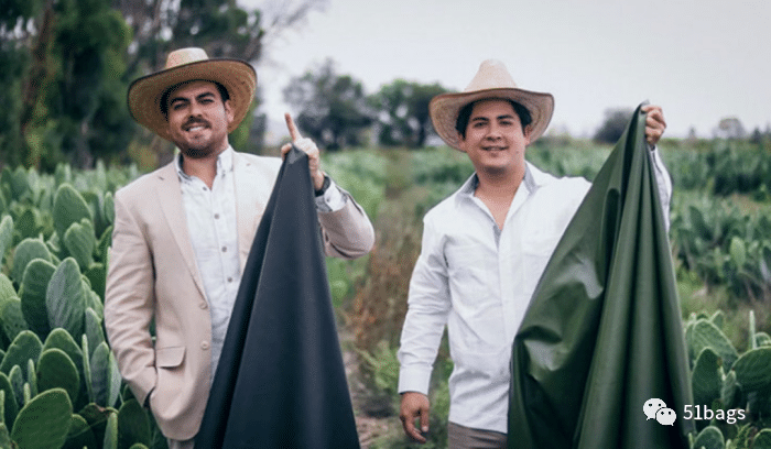 Jóvenes mexicanos desarrollan cuero vegano a partir del cactus y revolucionan la moda.