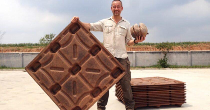Fabrican pallets de coco que pueden salvar 200 millones de árboles al año. Una solución ecológica.