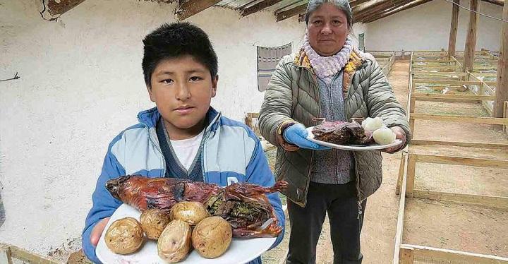 Tiene 10 años y aprendió a criar cuyes para ayudar a su familia.