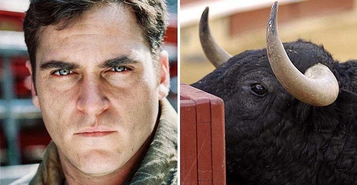 """Joaquín Phoenix: """"Jamás interpretaría a un torero, a menos que al final el toro me mate"""". Su postura es firme."""