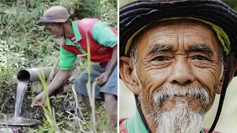 Indonesia: plantó 11000 árboles, creó un bosque él solo y evitó la sequía.