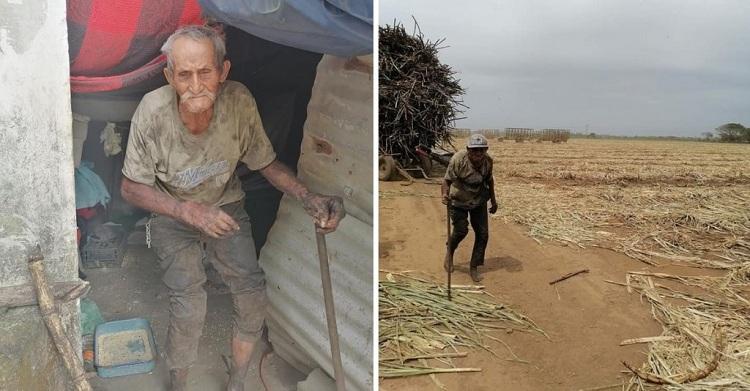 Tiene 94 años, trabaja 12 horas al día y nadie lo ayuda.